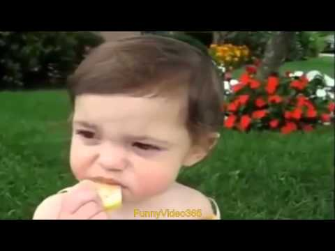 Funny Baby Accidents : Funny Youtube Videos