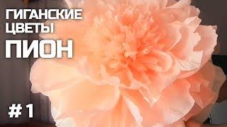 ГИГАНТСКИЕ ростовые цветы. Пион. Часть I / Free Standing Giant Flower | Giant Paper Peony | Part 1