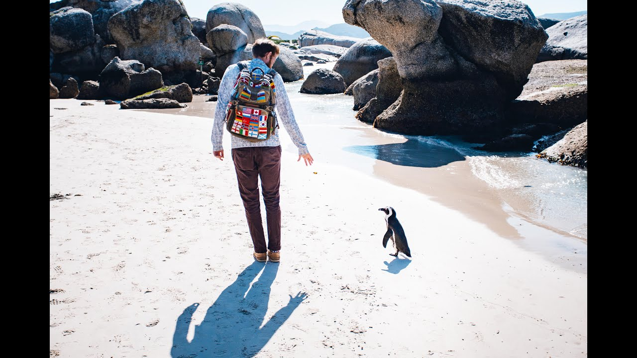 The Ultimate 7 Days in Cape Town