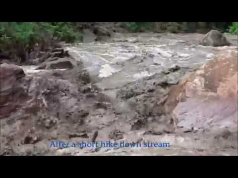 Historic Flash Flood in Zion National Park ~PEOPLE TRAPPED~ (The Narrows)
