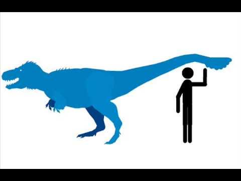 New nanuqsaurus stk.