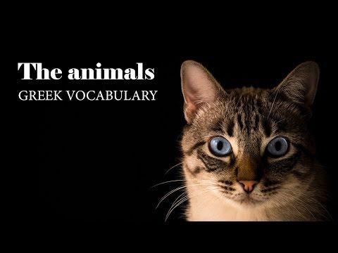 Learn Greek: Lesson 7 - The animals | Τα ζώα