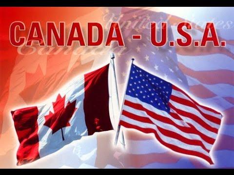 CANADA & USA SHIPPING RACING PIGEON GERMANY CHAMPION KULBACKI STUD- Hodowla Gołębi Sportowych!