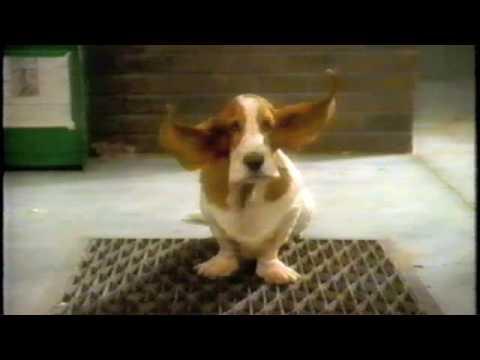 Hush Puppy Youtube