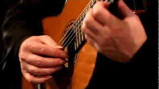 Rodrigo Concierto de Aranjuez: 1st movement.mpg