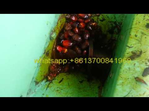 Home Use Palm Fruit Red Oil Machine,Palm Oil Plant,Palm Oil Processing Line