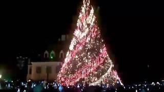 Video Brasov Vezi aprinderea luminilor din bradul de Craciun din Piata Sfatului
