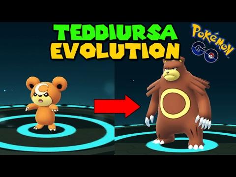 Evolving TEDDIURSA to URSARING (Pokemon Go GEN 2 Evolution ...