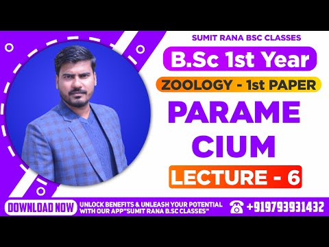 PARAMECIUM Part-1 (Unit 1st, Paper 1st)||BSc. 1st Year Zoology ||Sumit Rana||