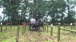 ARON POWOZY - Konie i Powozy Rokosowo 10.06.2012 cd. 5