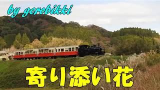 「寄り添い花」/西川ひとみ Japanese Taishogoto 大正琴 /Gerobikki
