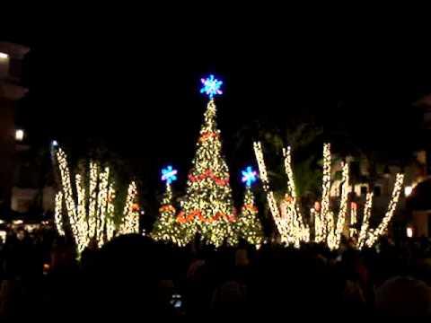 Amazing Night Symphony in Lights Gulfstream Park Hallandale