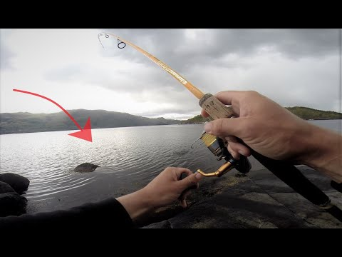 Fishing Norway Landbased POLLACK Fishing From A Remote Island, Live Biss