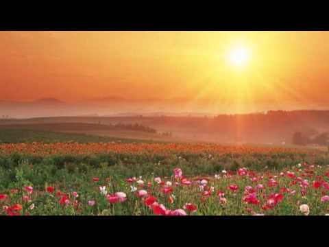 The Sound of Music  -  Morning Hymn & Alleluia