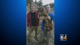 Hikers Dig Deep To Save Dog From Abandoned Mine