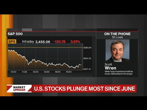 Stock Market Selloff Was Bound to Happen: Wells Fargo's Wren