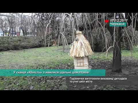 Телеканал АНТЕНА: У сквері «Юність» з᾽явилися їдальні для птахів