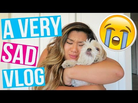a very sad vlog