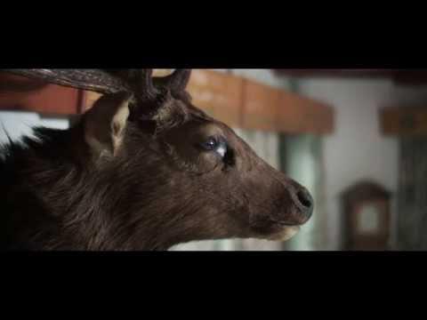 The Austrian Cowboy | Short doco by Bengar
