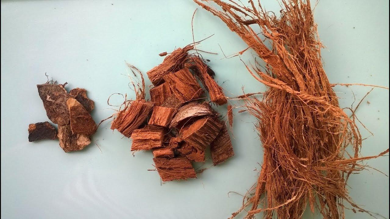 Кокосовый субстрат: как использовать брикеты, таблетки, стружку и