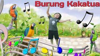 Burung Kakak Tua Lagu Anak Indonesia Terpopuler