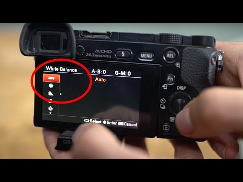White Balance EASY EXPLAINED - Photography Beginner Tutorial - Jaworskyj