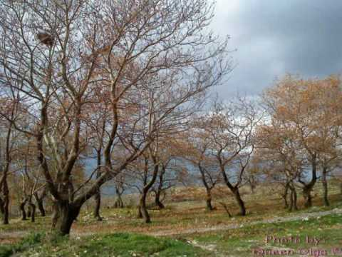 Saraqinishtë - Gjirokaster