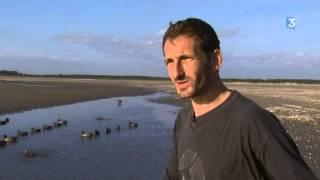 Une nuit au cercueil : chasse au hutteau en Baie de Somme