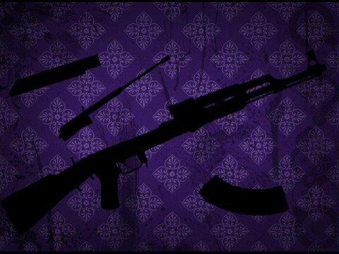 Puscifer - DoZo (Guns For Hire)