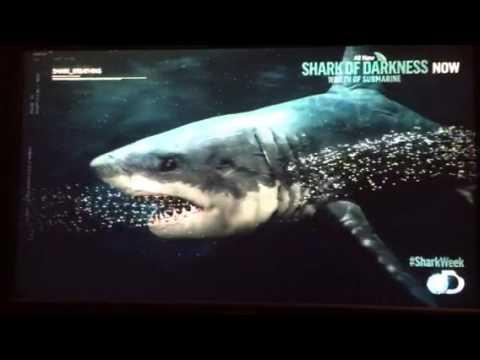 Shark Week Скачать