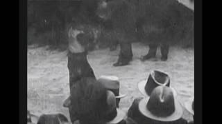 1930 Children Demonstrate Martial Arts - Chinatown -New York