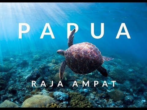 Indonesia Papua, Raja Ampat - Travel and Diving  2017