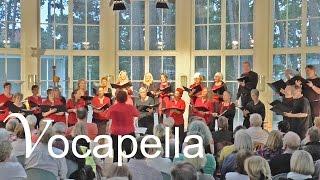 Vocapella - Ein Freund, ein guter Freund | Live in Timmendorfer Strand