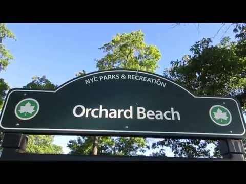 Orchard Beach, Pelham Bay Park, Bronx, New York City