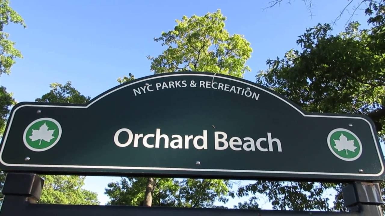 Park Orchard Beach