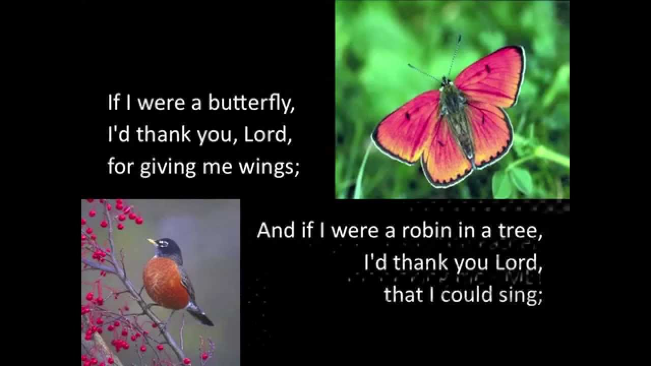 if were a butterfly