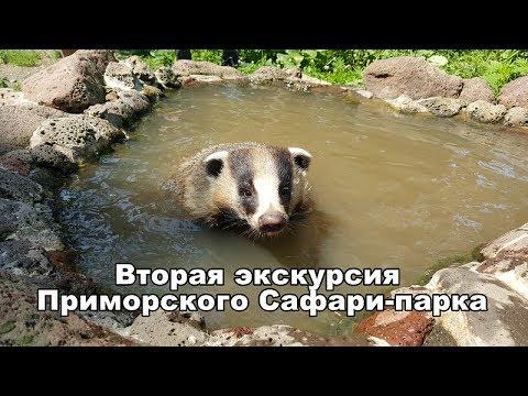 Сайт знакомств  Приморский край: бесплатные
