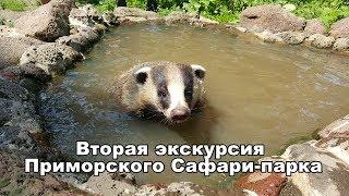 Вторая экскурсия Приморского Сафари-парка