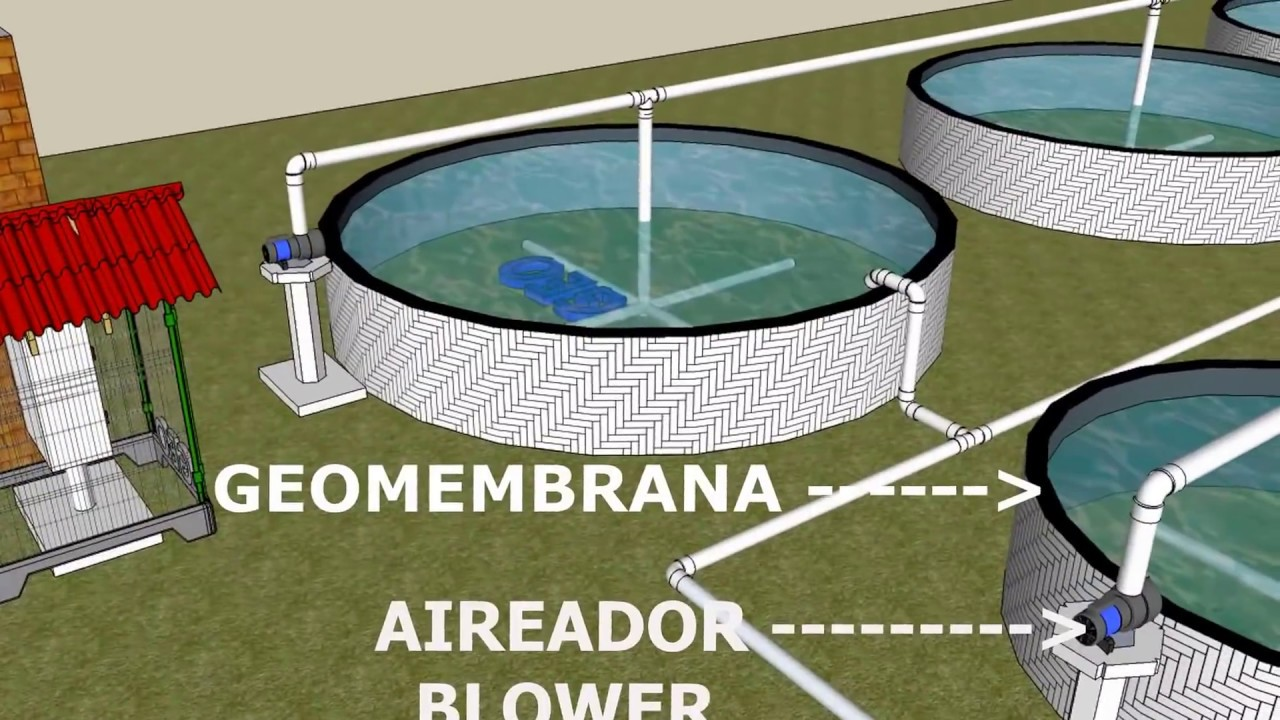 Unidad intensiva para piscicultura con estanques de for Impermeabilizante para estanques de agua