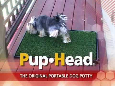 pup head original portable dog potty doovi. Black Bedroom Furniture Sets. Home Design Ideas