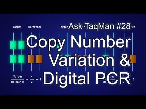 Detecting Copy Number Variation (CNV) With Digital PCR - Ask TaqMan #28