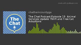 The Chat Podcast Episode 19: Animal Services Update TNVR and Free Cat Adoptions