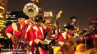Los Capos De Mexico - Tequila y Bucanas