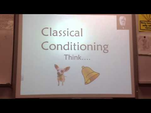 Ivan Pavlov Basic Lecture 3/12/2013