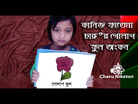 How to Draw a Rose Drawing kaniz Fatema Charu Very Easy Step by Step