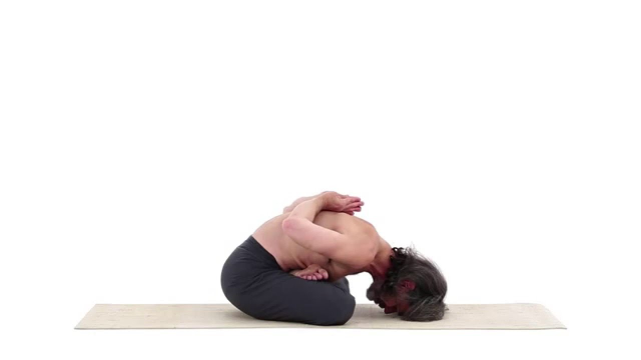 Yoga Seal Pose Yoga Mudra Asana Youtube