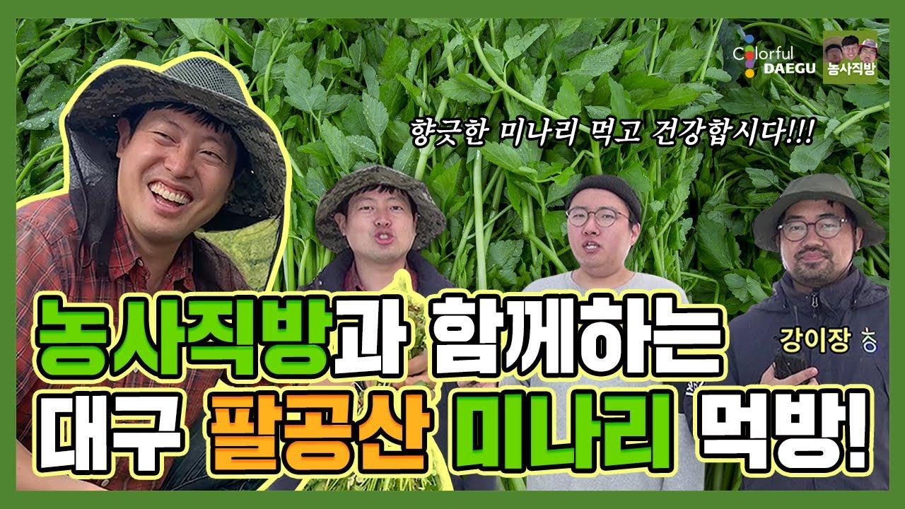 [농사직방X대구시] 청년농부와 함께하는 팔공산 미나리 먹방! (feat. 볶음밥은 필수)