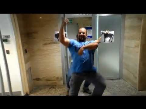 Gangnam Style - CSN Telecom