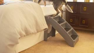 Premier Pet Plastic Steps Quick Overview