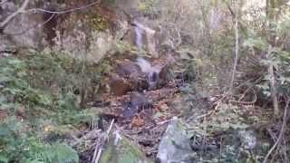 大倉山の滝と紅葉の風景 鳥取県日南町